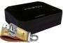 Накопитель USB LG 2 Гб Golden with gift box